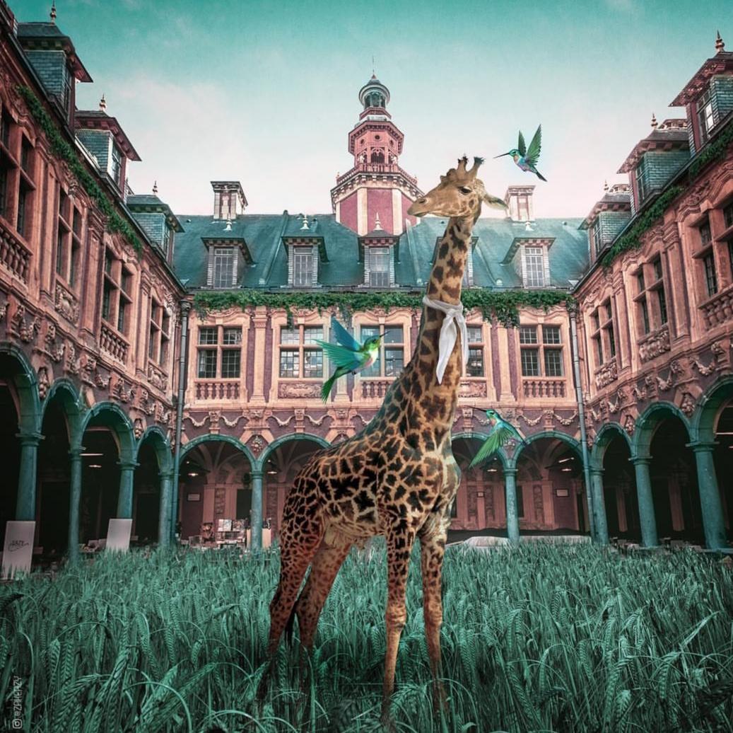 Girafe à la Vieille Bourse de Lille