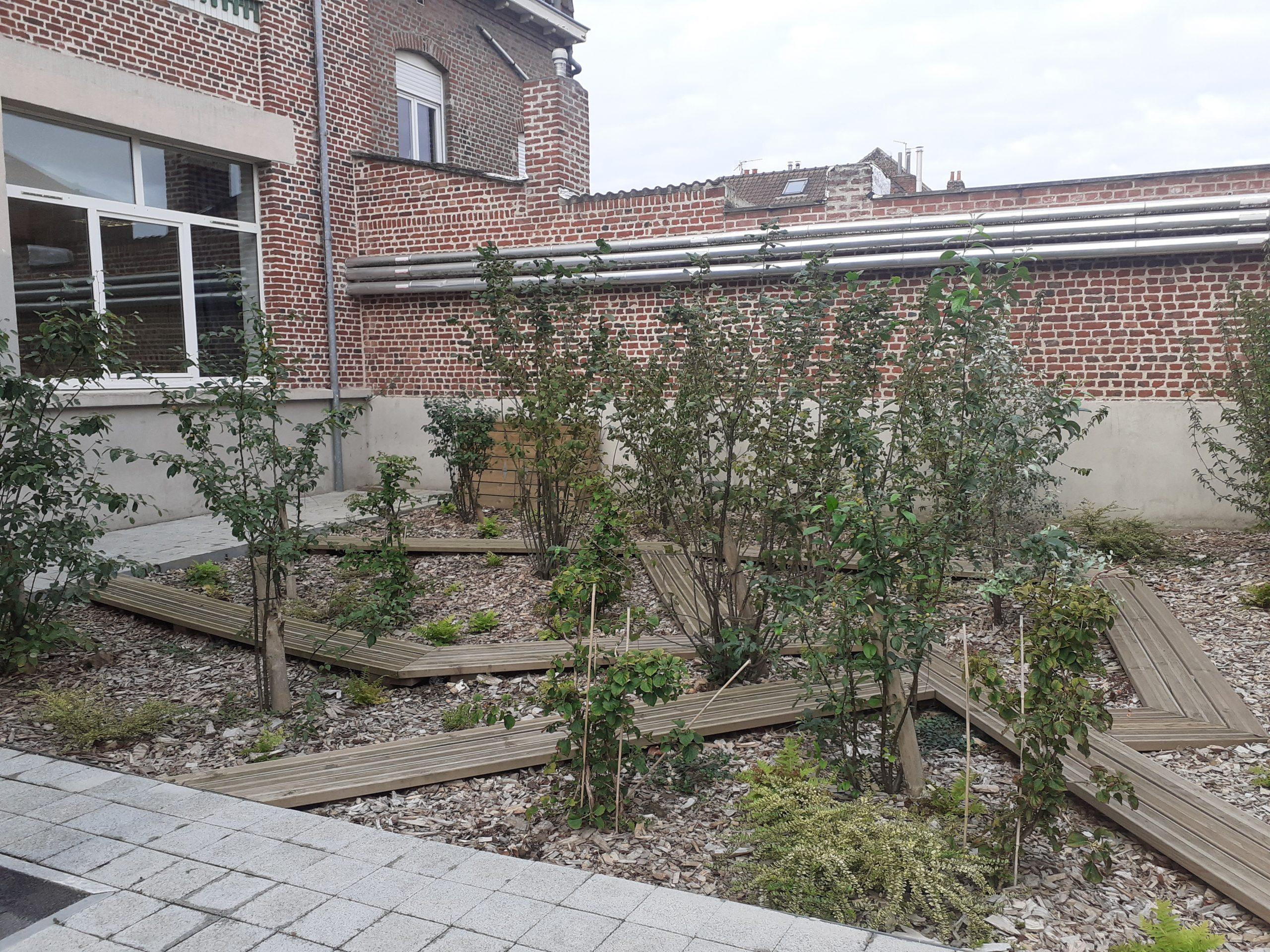 À l'image de ce compost/jardin, l'école Turgot met en place des projets de développement durable comme un potager hors sol, un compost ou encore recolte l'eau de pluie© Sarah Khelifi