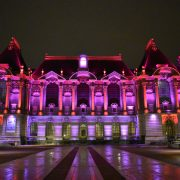 Palais-des-Beaux-Arts-octobre-rose